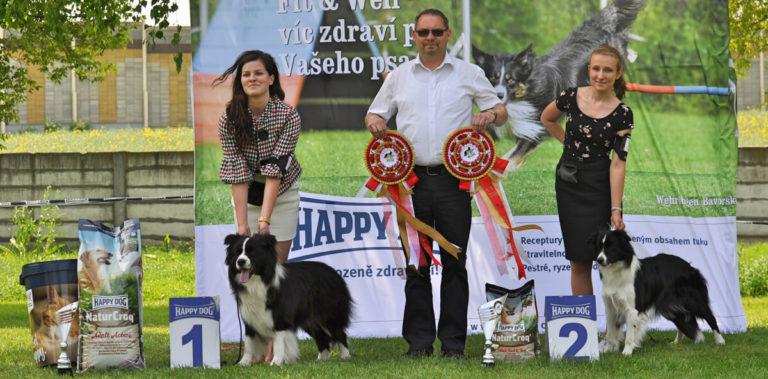 Výsledky Špeciálna výstava Vlčkovce, 5.5.2018
